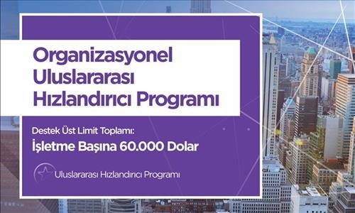 kosgeb_hizlandirici_destek_programi